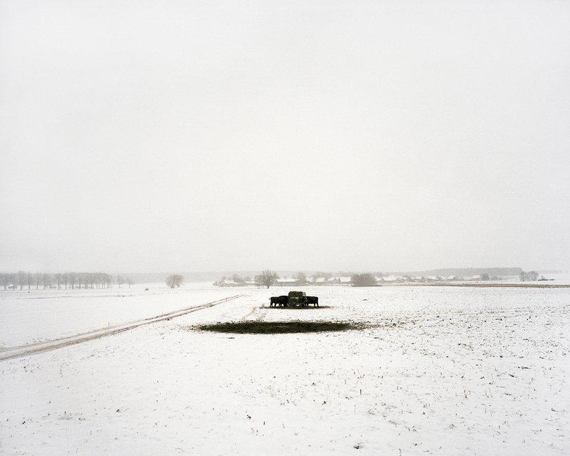 Hans-Christian Schink | Hinterland